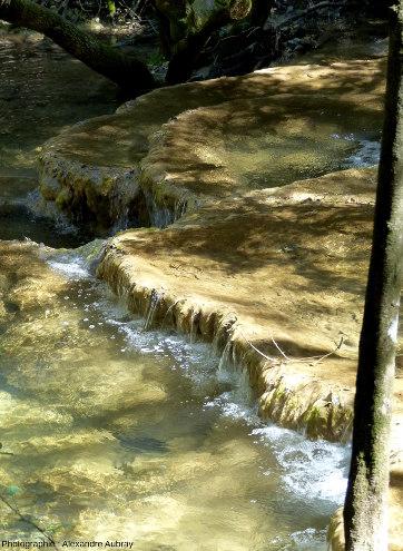 Les gours de sources de l'Huveaune, massif de la Sainte Baume