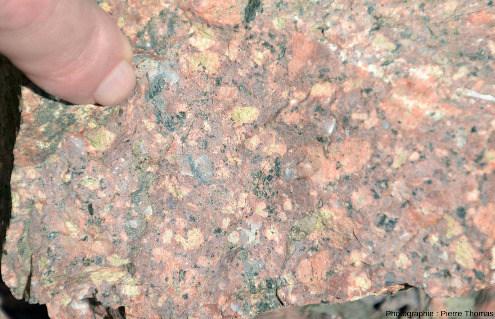 Échantillon de microgranite porphyroïde photographié sur l'affleurement de Pont-Trambouze, Rhône