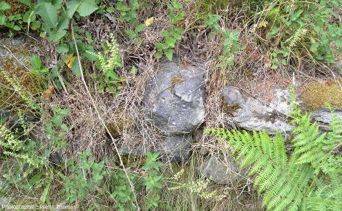 Un affleurement de la diorite de Piolard