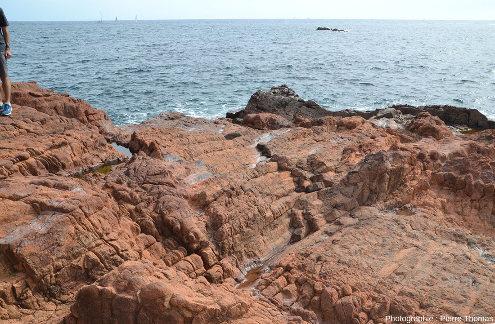 Prismes horizontaux de rhyolite permienne rouge, sentier littoral de la Batterie des Lions, Saint-Raphaël, Var