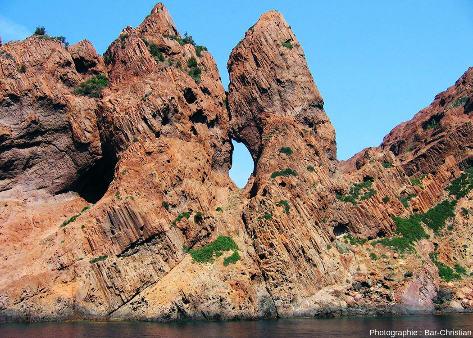 Filon de basalte (avec des prismes perpendiculaires aux bordures) recoupant des brèches rhyolitiques, réserve de Scandola (Corse)
