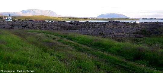 Extrémité de la coulée Eldhraun d'aout 1729 dans le lac Mývatnau pied du volcan Krafla (Islande)