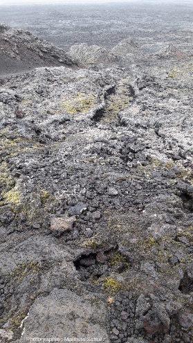 Détails d'une coulée basaltique émise par le volcan Krafla lors des «nouveauxfeux du Mývatn», en 1975-1984, Islande