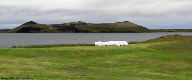 Pseudocratères d'un peu plus grande taille, sur un des nombreux ilots du lac Mývatn (Islande), vus depuis Skútustaðir