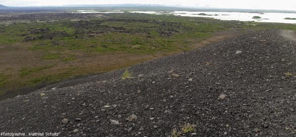 Le site de Dimmuborgir, dans l'Est du lac Mývatn, vu depuis le cône de scories Hverfjall (Islande)