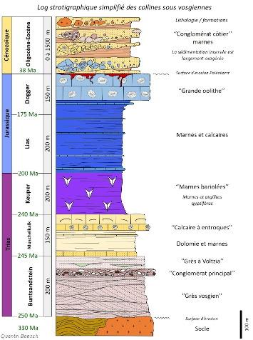 Colonne stratigraphique de la couverture sédimentaire du champ de fractures de Guebwiller
