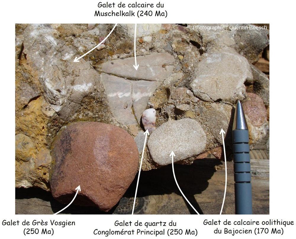 Conglomérat côtier de l'Oligocène