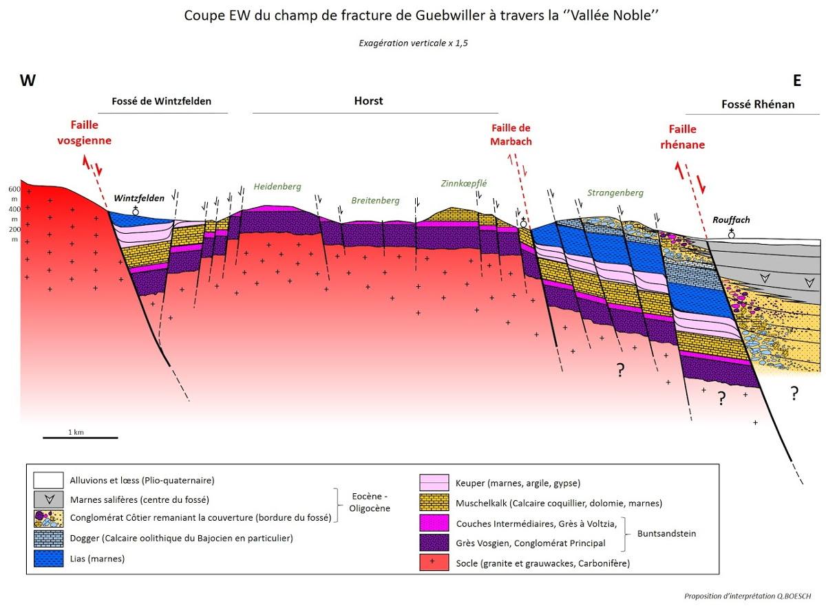 Coupe géologique de la Vallée noble