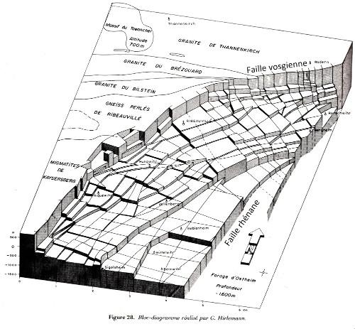 Bloc diagramme du champ de fractures de Ribeauvillé