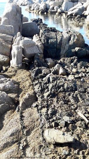 Série de filons basiques décimétriques dans la granodiorite de l'ile Lavezzo