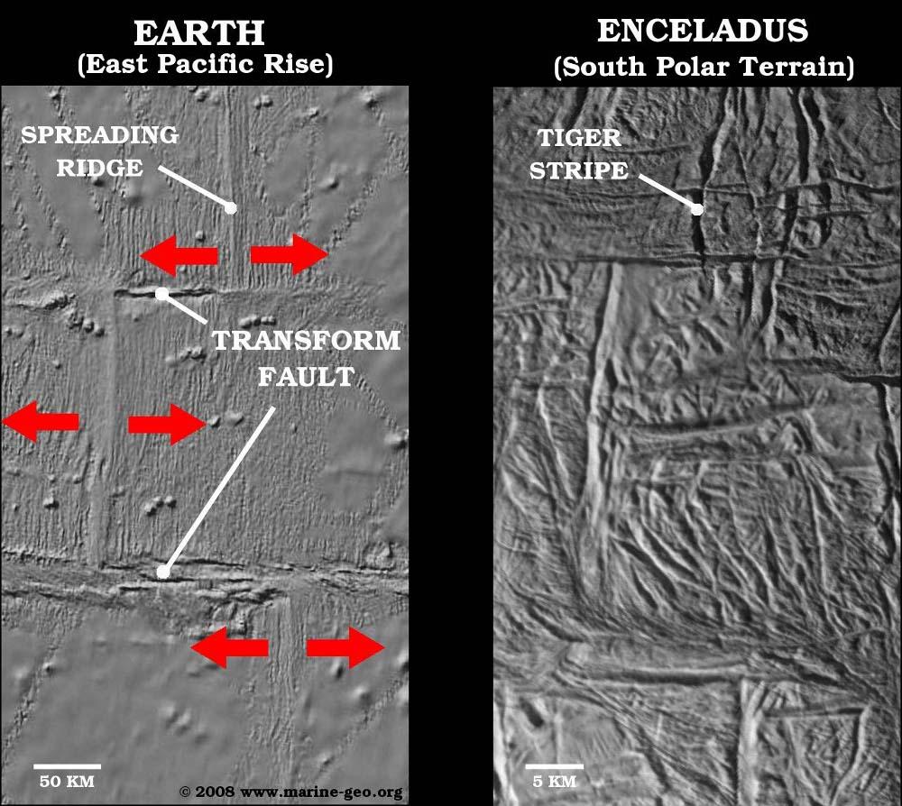 Comparaison entre une rayure de tigre segmentée sur Encelade et une faille transformante segmentant une dorsale océanique terrestre