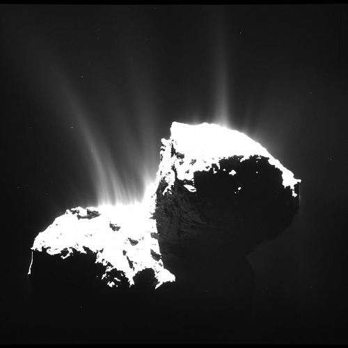 Image OSIRIS (caméra à grand angle) prise depuis 30km montrant l'activité de 67P/CG le 22 novembre 2014