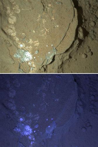 Première utilisation des ultra-violets pour chercher les minéraux fluorescents