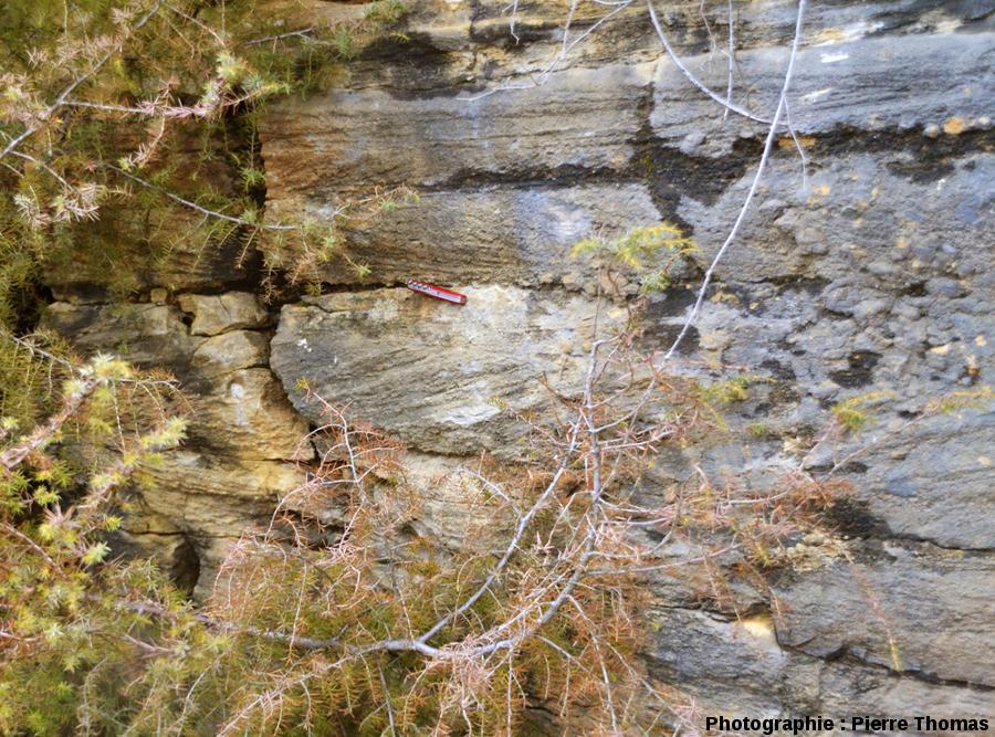 Stratification obliques et entrecroisées terrestres, un équivalent des stratifications de Yellowknife Bay