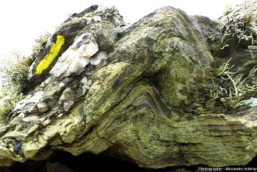 Plis dans des glaucophanites de l'ile de Groix