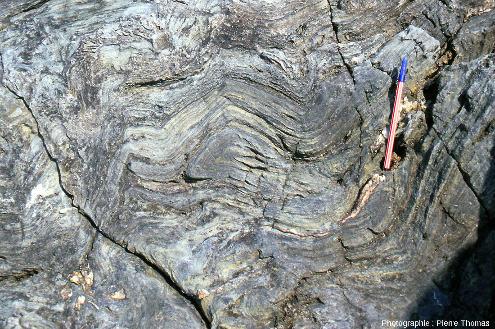 Détail des plis replissés dans des glaucophanites de l'ile de Groix
