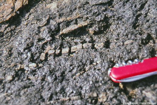 Lawsonite tronçonnée dans une glaucophanite de l'ile de Groix