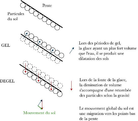 Schéma de la reptation des sols et de la formation des coulées de solifluxion