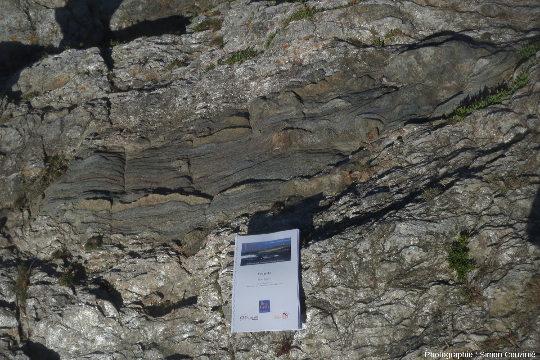 Métabasite boudinée dans des micaschistes, ile de Groix