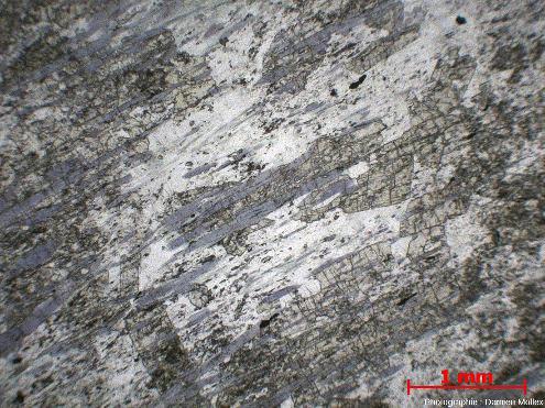 Lame mince d'une glaucophanite de faciès schiste bleu de l'ile de Groix en LPNA