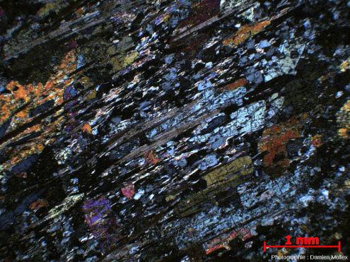 Lame mince d'une glaucophanite de faciès schiste bleu de l'ile de Groix en LPA