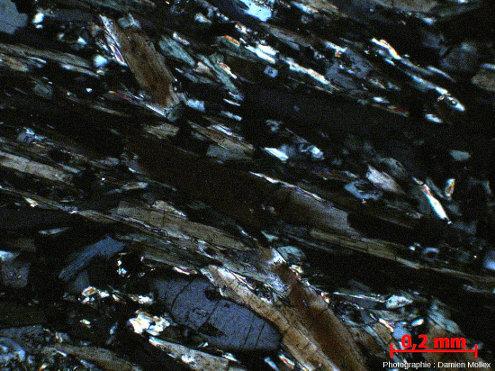 Détail de la foliation montrant les baguettes de glaucophane et les chlorites