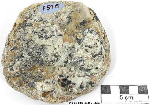 Échantillon de micaschiste à chloritoïde, glaucophane et grenat de l'ile de Groix (Quéhello)