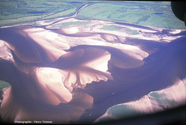 Vue aérienne d'un delta en Yakoutie (république russe de Sibérie)