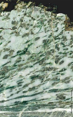 Zoom sur un gabbro ophiolitique déformé, Chamrousse (38)