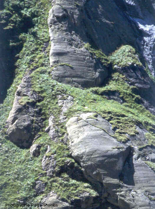 Vue d'un affleurement présentant des stries glaciaires, vallée de Vicdessos (Ariège)
