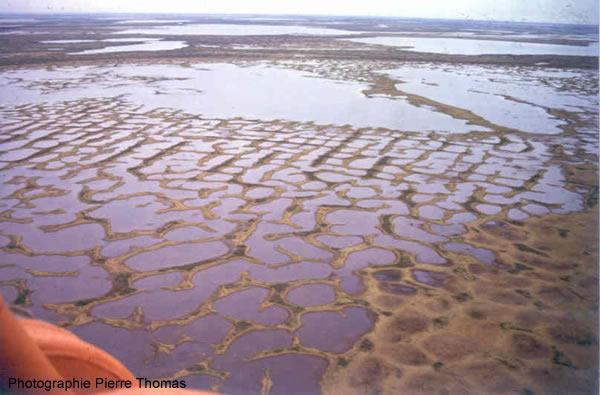 Vue aérienne d'un sol polygonal en Yakoutie, Sibérie du Nord