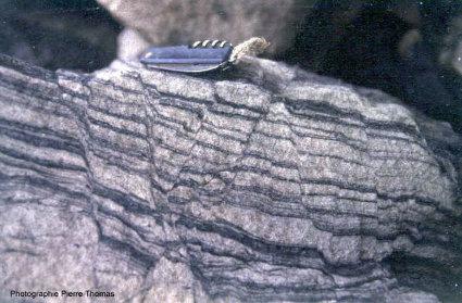 Micro horsts et grabens dans un grès stéphanien, Montceau Les Mines (Saône et Loire)