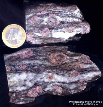 Gneiss de la nappe de la Dent Blanche (Alpes italiennes) : illustration d'une récation métamorphique prograde (température croissante)