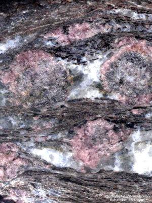 Vue de détail du gneiss