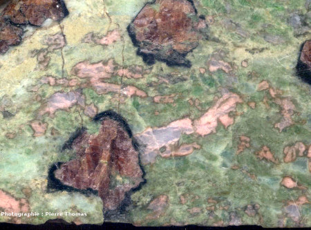 Vue de détail de l'éclogite