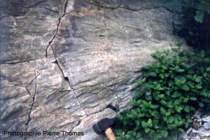 Flute cast dans le Crétacé de la clue de Barles (Alpes de Haute Provence)
