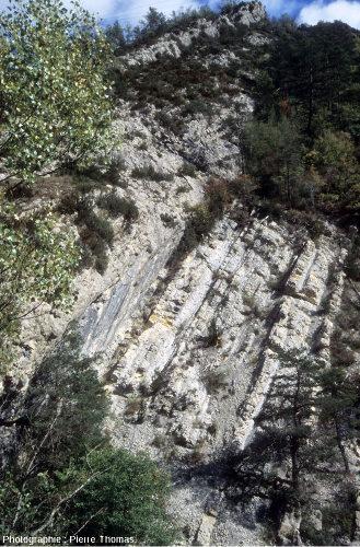 La limite Crétacé-Tertiaire à la Clue des Miolans, Haut-Var (Alpes maritimes)