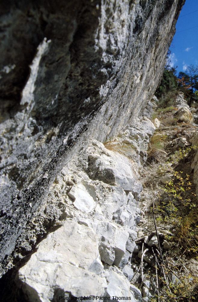 Vue rapprochée de la limite Crétacé-Tertiaire à la Clue des Miolans, Haut-Var (Alpes maritimes)
