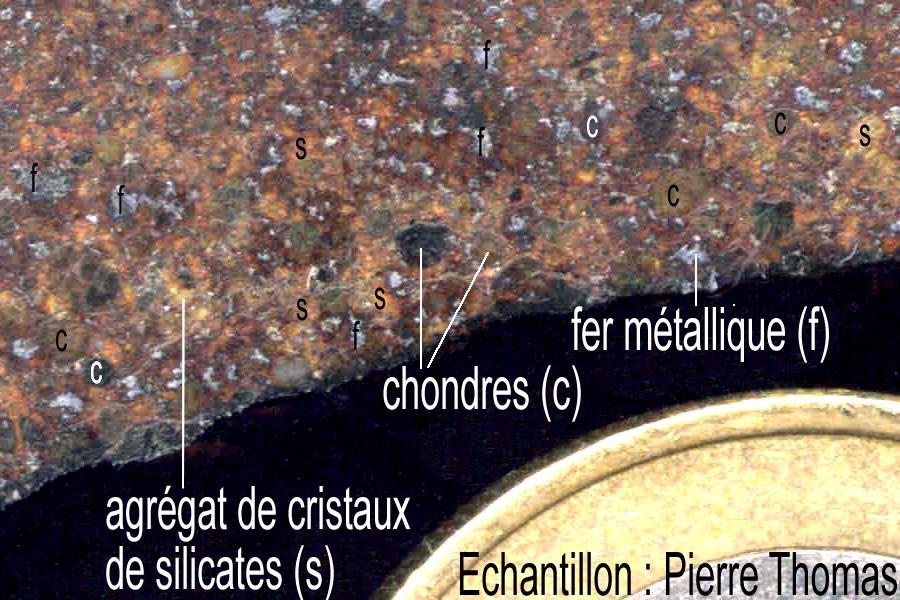 Détail de la chondrite ordinaire présentée, image interpétée