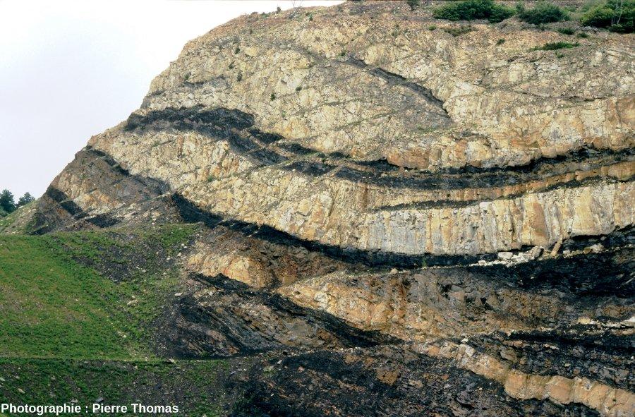 couches de charbon dans un bassin de type limnique