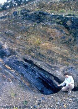 Alternance d'argiles, de charbon et de grès