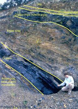 Alternance d'argiles, de charbon et de grès, image interprétée
