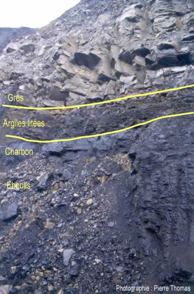 Couches de charbon dans un bassin