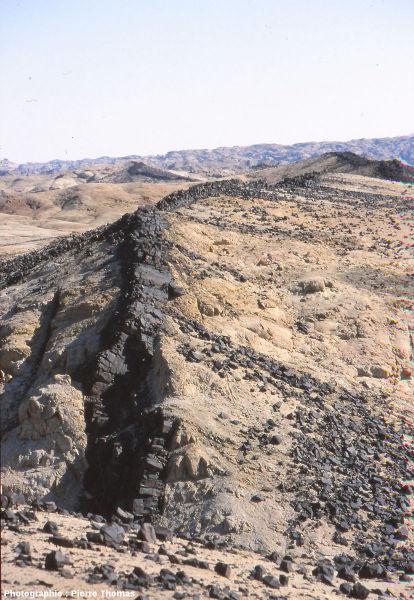 Gros plan sur un dyke, constitué de basalte noir, traversant des leucogranites clairs (partiellement recouverts de blocs de basalte)