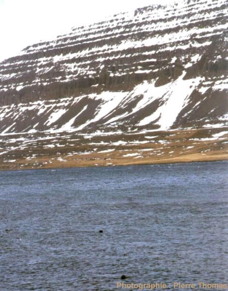 Empilement de coulées basaltiques dans un fjord au NO de l'Islande