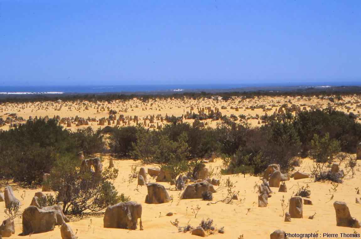 Situation du site du Désert des Pinacles (Australie)