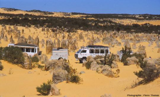 Colonnes de grès calcaire dans le Désert des Pinacles (Australie)