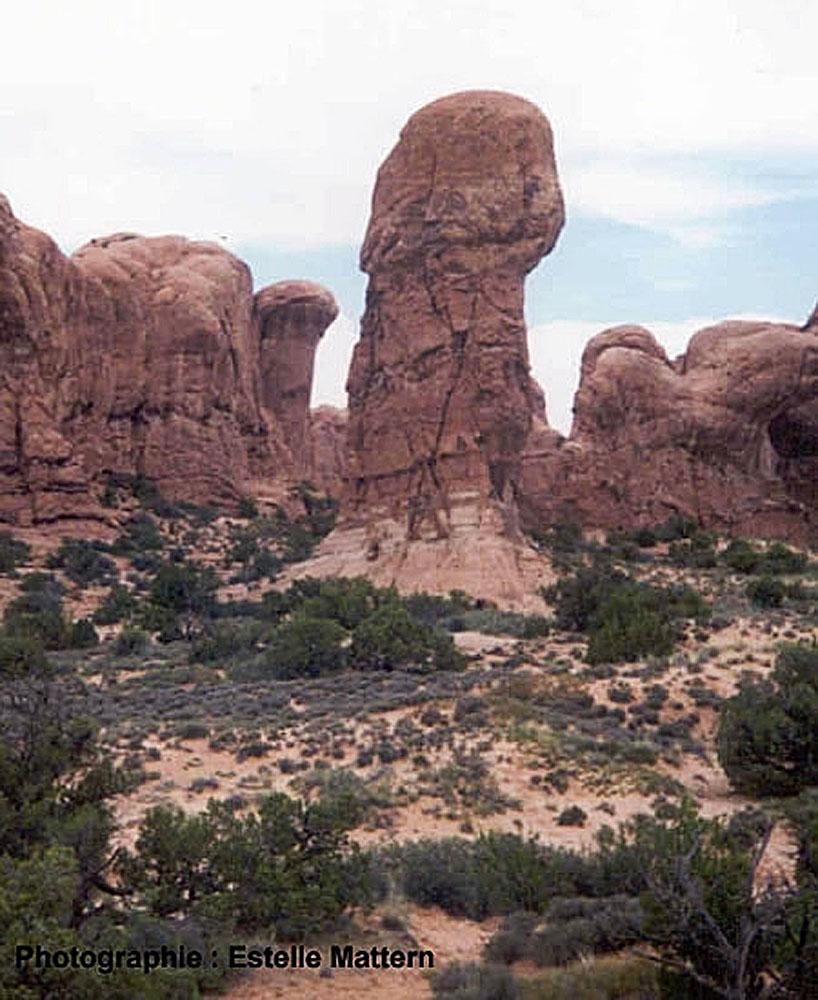 Colonne sculptée par l'érosion différentielle dans des sables grésifiés de l'Ouest américain
