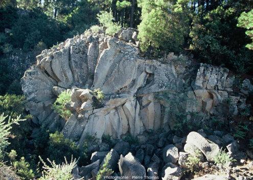 Orgue basaltique en gerbe (ou en rosace), parc national de Ténérife, Canaries