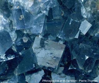 Cristaux de fluorine cubiques, vue de détail